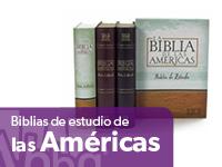 Biblias De Estudio Macarthurthompsonscofield Ryrie Y Más