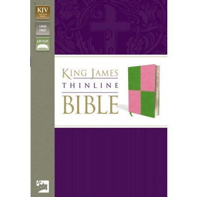 KJV, Thinline Bible, Large Print, Imitation Leather, Green/Pink, Red Letter Edition - Large Print