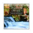 CD-Babbling Brook
